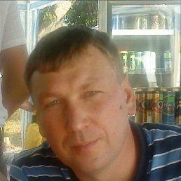 Дмитрий, 44 года, Травники