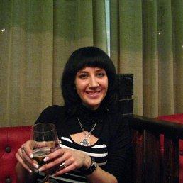 Pummka, 37 лет, Чернигов