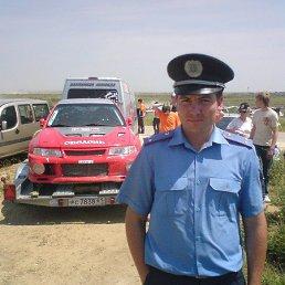 дима, 36 лет, Белозерка