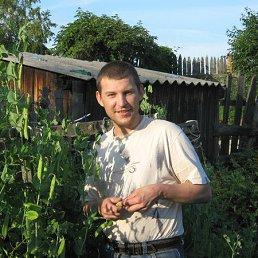 Николай, 38 лет, Суходол