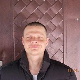 Артём, 33 года, Кобеляки