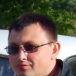 Александр, Нижний Новгород, 39 лет