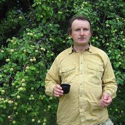 Александр, 62 года, Инжавино