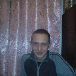 сергий, 30 лет, Владимир-Волынский
