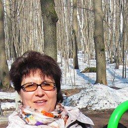 Светлана Каракозова, 49 лет, Долгопрудный
