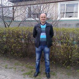 Владимир, 49 лет, Новоайдар