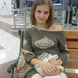 саша, 31 год, Светлогорск