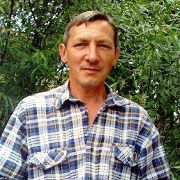 Юрий, 62 года, Пестово