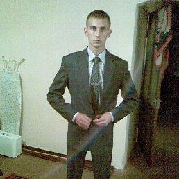 Антоха, 27 лет, Воронеж