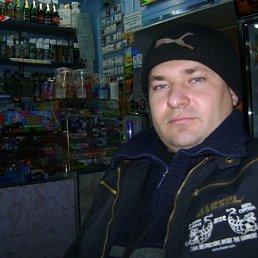 вячеслав, 37 лет, Краснополье
