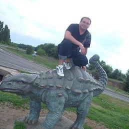 Сергей, 33 года, Красногоровка