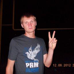 дмитрий, 33 года, Докучаевск