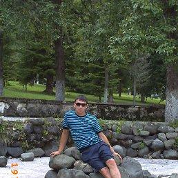 Альберт, 29 лет, Апастово