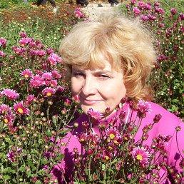 Валентина, 61 год, Скадовск