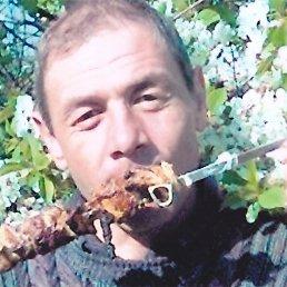 Валерий, 53 года, Днепрорудное