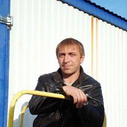 Сергей, 46 лет, Боровичи