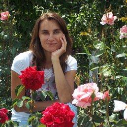 Людмила, 42 года, Ладыжин