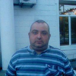 дмитрий, 41 год, Зоринск
