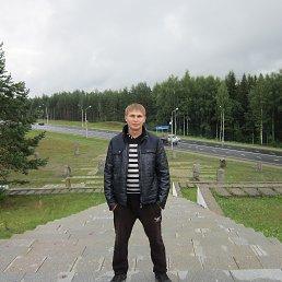 Дмитрий, 29 лет, Кириши
