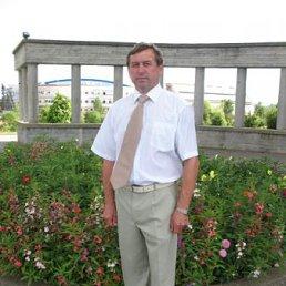 Виктор, 66 лет, Бежаницы