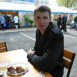 иван, 34 года, РОГАЧЁВ
