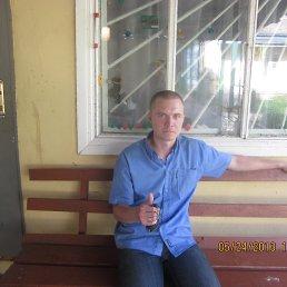 Санёк, 37 лет, Буды