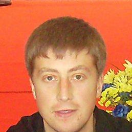 Aleksandr, 38 лет, Сквира