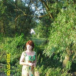 Фото Елена, Чудово, 51 год - добавлено 8 августа 2013