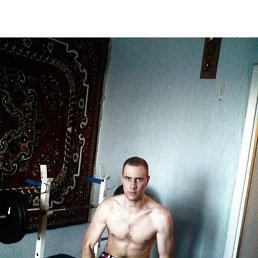 Саня, 29 лет, Бердичев