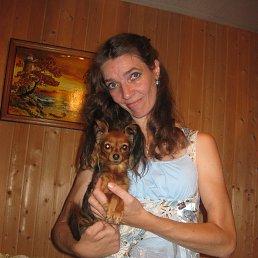 Светлана, 46 лет, Каменногорск