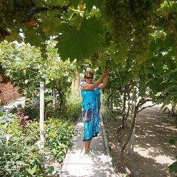 Ольга, 44 года, Катав-Ивановск