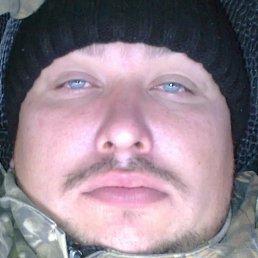 Юрий, 38 лет, Койгородок