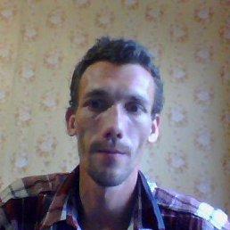 Александр, 40 лет, Усть-Луга