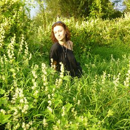 Елена, 38 лет, Белев