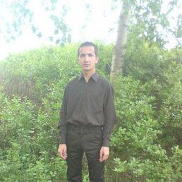 Сергей, 32 года, Алексеевское