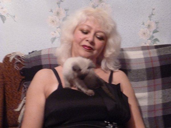 Фото: Порода: Сиамская. Сиамские кошки имеют свой, уникальный характер. Они независимы, имеют врожденные охотничьи инстинкты и горячий темперамент, очень чувствительны... - Alinka, Пенза
