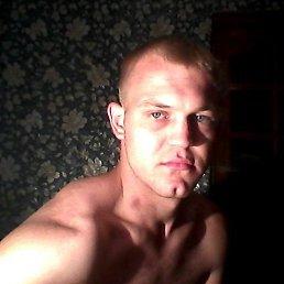 Михаил, 27 лет, Жабинка