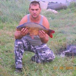 Александр, 42 года, Сапожок
