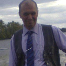 Василий, 61 год, Горишние Плавни