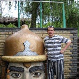 Андрей Дубов, 40 лет, Иловайск
