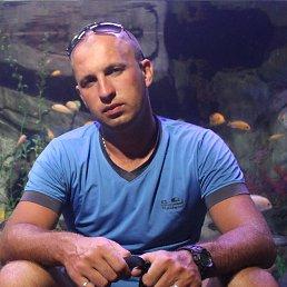 Дмитрий, 35 лет, Ессентуки - фото 2