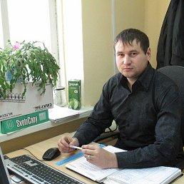 Алексей, 29 лет, Калач-на-Дону