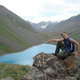 Никита Аксенов, 28 лет, Екатеринбург