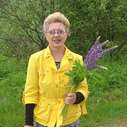 Наталья, 65 лет, Невель