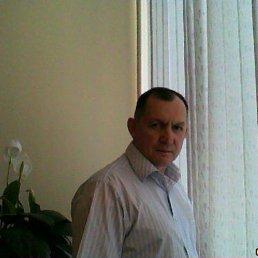 Геннадий, 63 года, Раменское