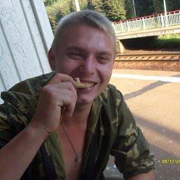 Андрей, 28 лет, Заволжск