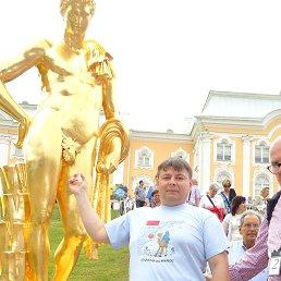Александр, 48 лет, Ивантеевка