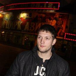 Сергей, 29 лет, Новоалексеевка