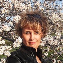 Оля, 44 года, Северодонецк