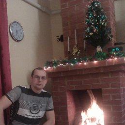 Фото Алексей, Белый, 35 лет - добавлено 25 сентября 2013